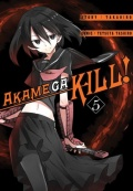 Akame-ga-Kill-05-n48065.jpg