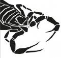 Alicja i skorpion