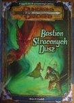 Bastion-Straconych-Dusz-n4466.jpg