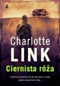 Ciernista-roza-n41108.jpg