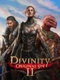 Divinity-Original-Sin-2-n48067.jpg
