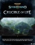 Dostępna nowa przygoda do Soulbound