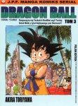 Dragon-Ball-03-Rozpoczyna-sie-Tenkaichi-