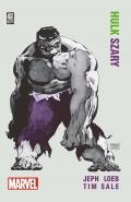 Hulk-Szary-n44251.jpg