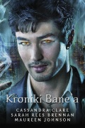 Kroniki-Banea-n42878.jpg