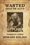 Lada dzień przedsprzedaż The Witcher RPG PL