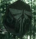 Nowy zwiastun The Last of Us Part II
