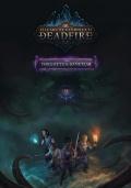 Ostatnie DLC do PoE II w grudniu