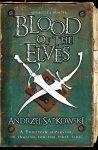The-Blood-of-Elves-n15737.jpg