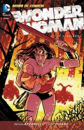 Wonder-Woman-3-Zelazo-n43643.jpg
