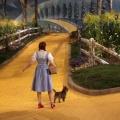 Wyprawa po żółtej, ceglanej drodze